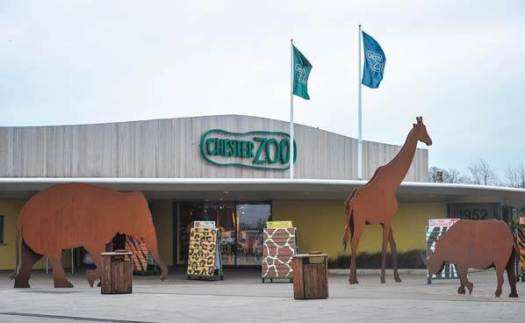 chester_zoo_1_day_fast_track_entrance_1_lgl_17_lge